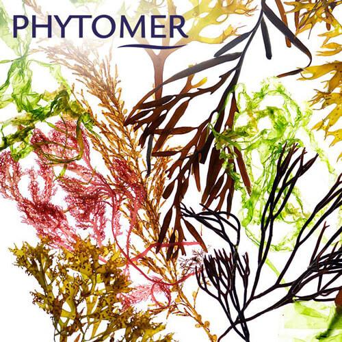 phytomer-procedura-veidui